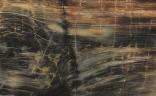 Petrified Wood Laminate